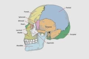 headache-location-meaning-chart